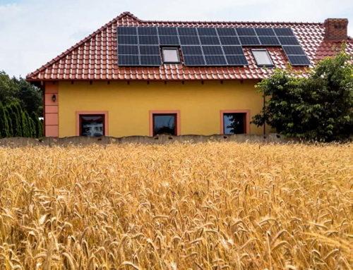 Agroenergia 2020